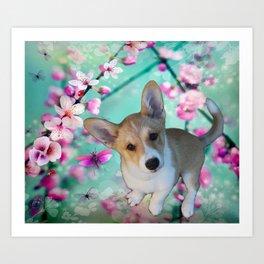 cuty cute corgi puppy of the queen of england Elisabeth, spring blue pink flower power blossom Art Print