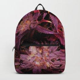 Intense Backpack