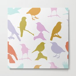 Assorted colourful birds Metal Print