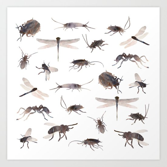 Insects Mix Art Print