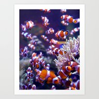nemo Art Prints featuring Nemo by deactivating account