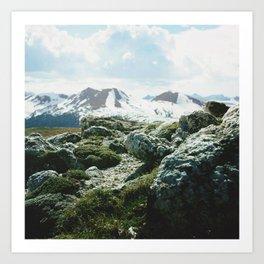 A Sitting Stone Gathers Moss Art Print