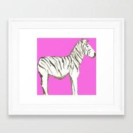 Zebra, Pink Framed Art Print