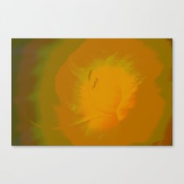 Day Lily Abstract Canvas Print
