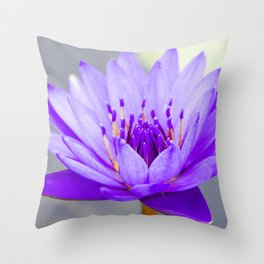 Blue Lotus In Bloom Throw Pillow