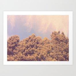 taken by trees Art Print