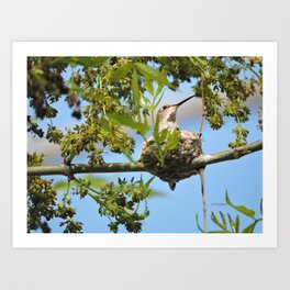 Hanging Out Over B Street Art Print