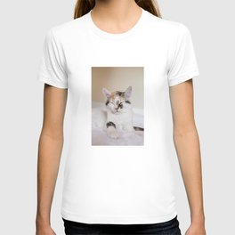 Sleepy cat (II) T-shirt