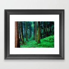 Tree forest Framed Art Print