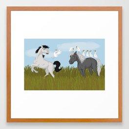 Camargue horse's trouble Framed Art Print