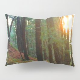 Talking To The Trees Pillow Sham