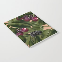 FRUITS AND LEAVES Notebook