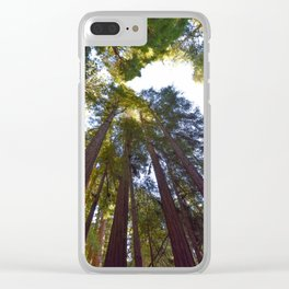 California Redwood Trees Clear iPhone Case