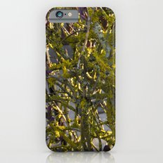 Moss in the Spring Slim Case iPhone 6s