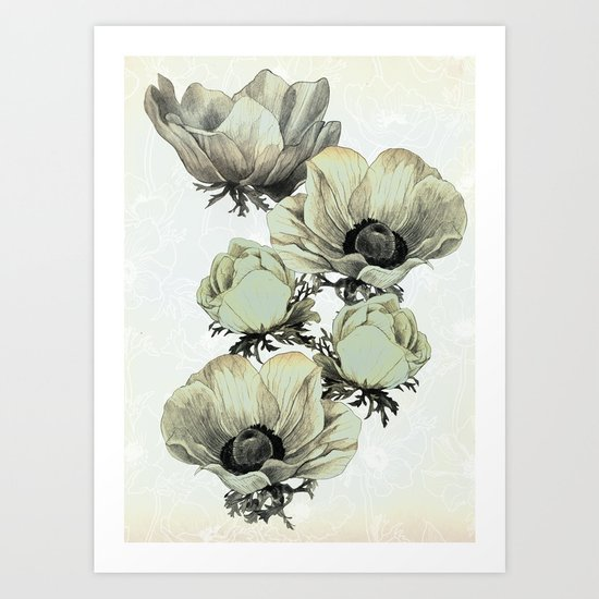 anemone flowers (white background) Art Print