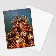 Sea Life Stationery Cards