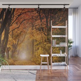 Autumn Fall Forest Path -  Nature Landscape Photography Wall Mural