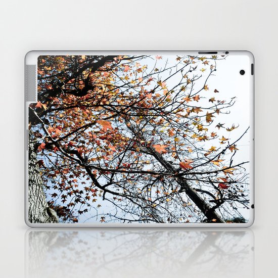 Fall II Laptop & iPad Skin
