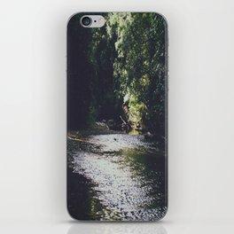 Serenity iPhone Skin