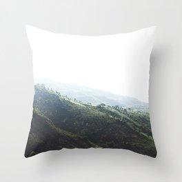 Ethiopian Coffee Plantations Throw Pillow