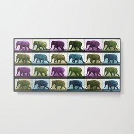 Time Lapse Motion Study Elephant Color Metal Print