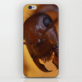 Giant Ant iPhone Skin