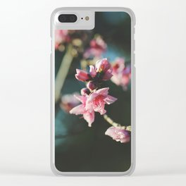 Peach tree in bloom Clear iPhone Case