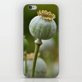 Poppy 280 iPhone Skin