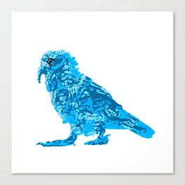 Kea Strut - Blues Canvas Print