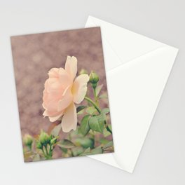 Calming Peach Rose Stationery Cards