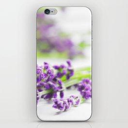 Lavender herb still life iPhone Skin