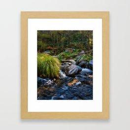Sedona Oak Creek Framed Art Print