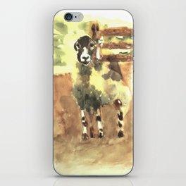 Sheep under the bridge iPhone Skin