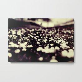 flowers field III Metal Print