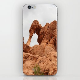 Elephant Rock iPhone Skin