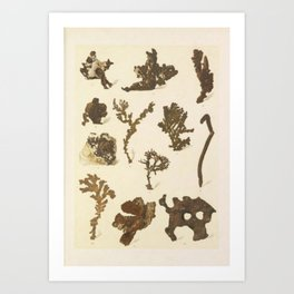 Copper Formations Art Print