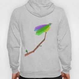 Spring Bird Hoody