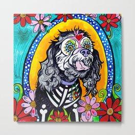 Angel the Havanese Poodle Mix Metal Print