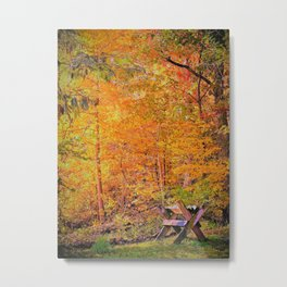 Autumn Magic Metal Print