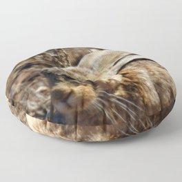 Jackrabbit Floor Pillow