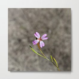 Pink in Idaho Metal Print