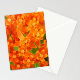 Butterfly Weed Flower Stationery Cards