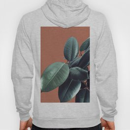 Ficus Elastica #17 #AutumnLeaf #foliage #decor #art #society6 Hoody