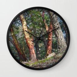 MADRONA WOODS Wall Clock