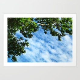 .look at the sky. Art Print