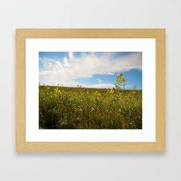 Prairie Sunset Framed Art Print