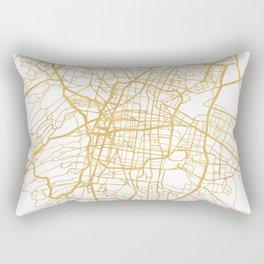 MEXICO CITY MEXICO CITY STREET MAP ART Rectangular Pillow