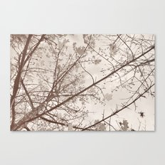 Flying with autumn leaves Canvas Print