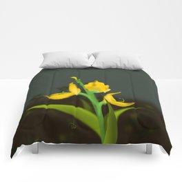 Yellow Fabaceae Comforters
