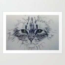 Ivy the Cat Art Print